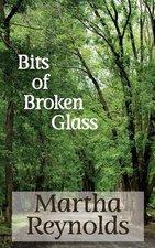 Bits of Broken glass