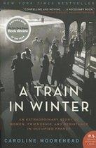 A Train in Winter (USED)