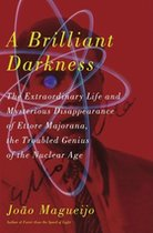 A Brilliant Darkness: The Extraordinary Life and Mysterious Disappearnace of Ettore Majorana, the Troubled Genius of the Nuclear Age (USED)