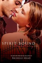 Spirit Bound (USED)