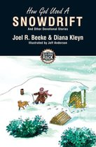 How God Used a Snowdrift (Building on the Rock #4) (USED)
